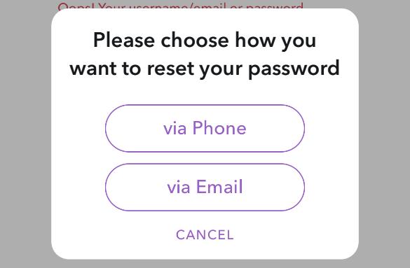 reset-password-way-snapchat